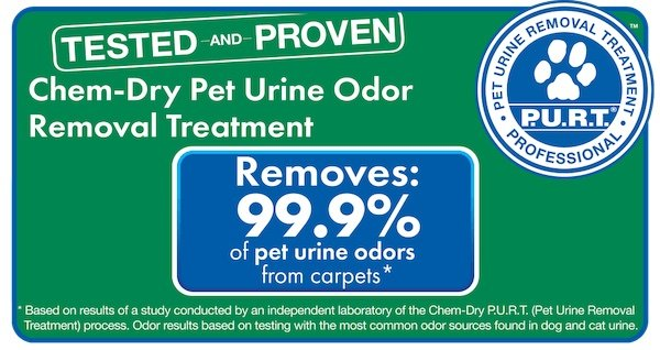 pet urine and odor removal annapolis md